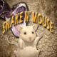 Snake n' Mouse Game
