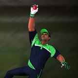 Cricket Fielder Challenge - Free  game