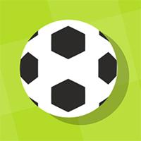 Pong Goal Game