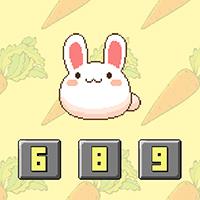 Bunny Math - Free  game